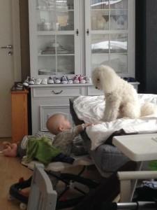 William umgås med hunden.