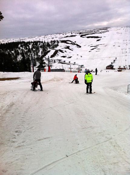 Människor åker skidor